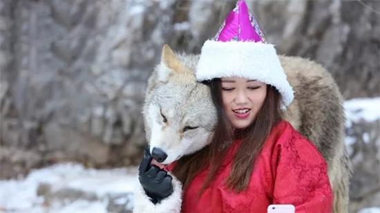 杨文静和自己养的狼。 本文图片扬子晚报·紫牛新闻