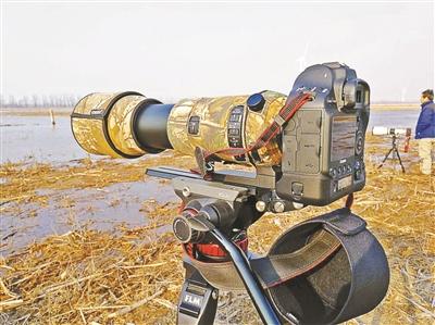 老人北京奥森公园拍荷花 价值6万元摄影器材被抢图片