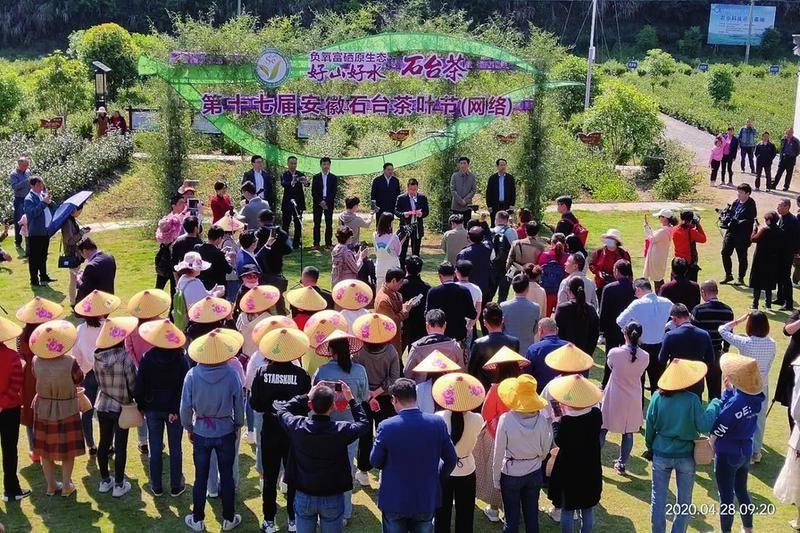 第十七届安徽·石台茶叶节开幕