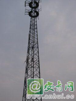 临泉:两小学生攀爬信号塔