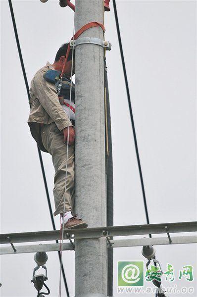 合肥一电工遭电击僵在电线杆上 目前尚未脱离生命危险