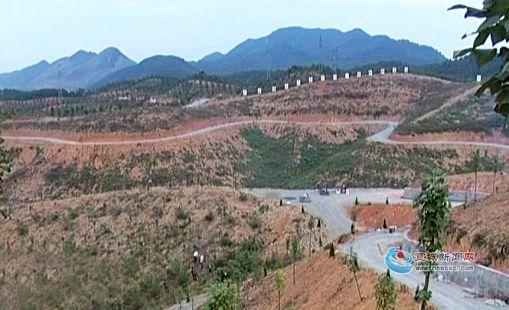 宁国市倾力打造中国树木博览园