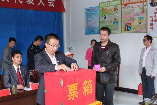共青团宿松县陈汉乡第二次代表大会召开
