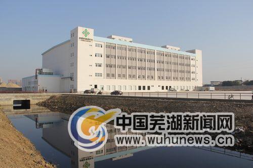 芜湖果品,冻品,水产(海鲜)批发市场盛大开业