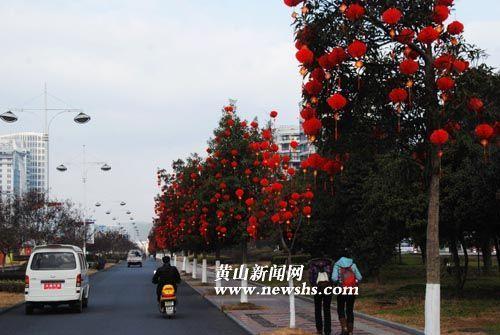 公园广场的行道树上悬挂10万个小灯笼,营造浓浓的,暖暖的春节气氛.