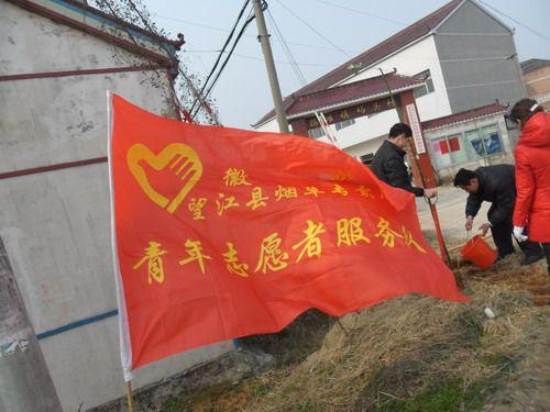 望江 徽映 青年志愿者开展义务植树活动