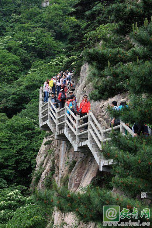 黄山风景区迎来暑期旅游高峰 -安青网
