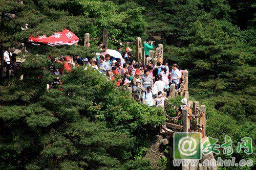 黄山风景区迎来暑期旅游高峰