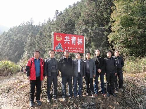 团市委与青阳县陵阳镇杨梅村共建共青林
